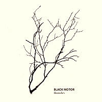 BLACK MOTOR: Branches