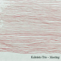 KALMISTO TRIO: Meeting