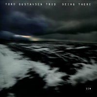 GUSTAVSEN, Tord Trio: Being There